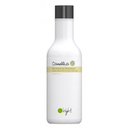 Szampon przeciwłojotokowy Camellia Oil-Control, O'right, 100ml