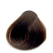 Dark chestnut 06