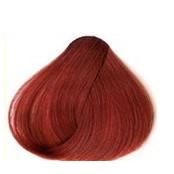 Red Cherry 24